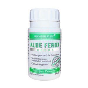 aloe-ferox-new-600x600